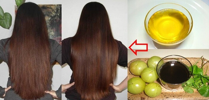Herbal Remedies For Hair Regrowth